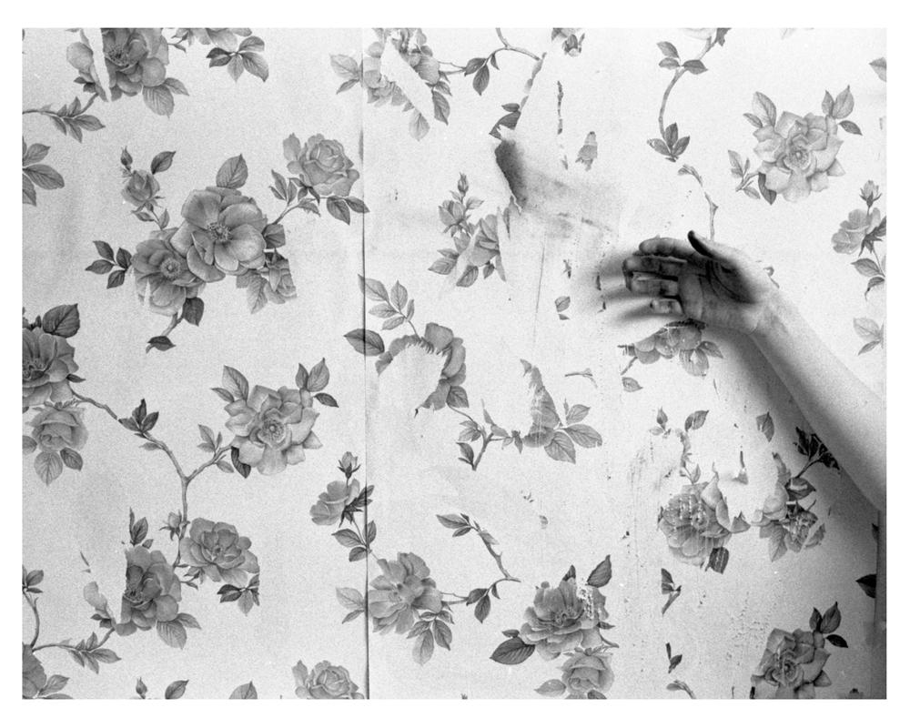 Corinne Perry Wallflower #7